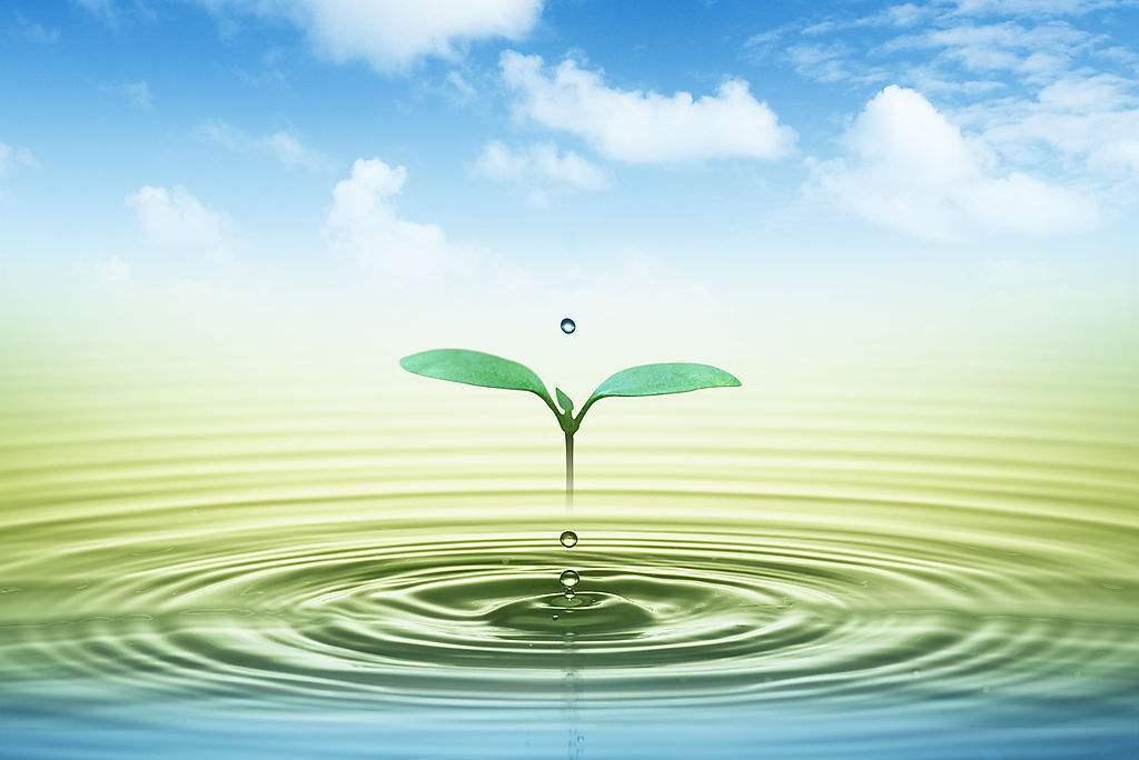绿色环保水处理剂的应用及发展研究