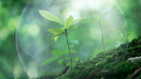 2019年生态环境工作主要目标:明确20字原则 重视并解决企业合理诉求